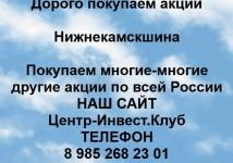 Покупка акций ПАО Нижнекамскшина