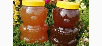 Мёд Алтайский. Урожай 2020 года, Алтайский край
