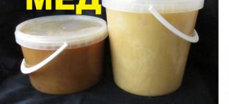 Мёд осенний, Новосибирская обл