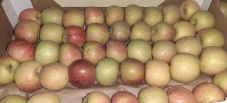 Яблоки Фуджи, сорт 2, калибр 55-65 в картонном лотке 60х40, вес 13-15кг мытые полированные