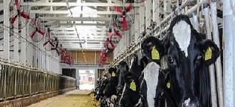 Вентиляционное оборудование для сельского хозяйства